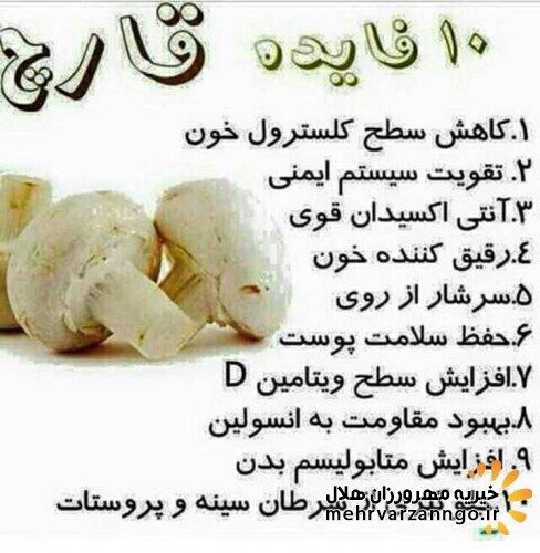10 فایده قارچ