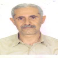 آقای علیپور