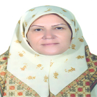 خانم حسینی